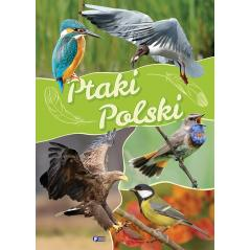 PTAKI POLSKI ALBUM