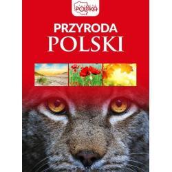 PRZYRODA POLSKI PIĘKNA POLSKA