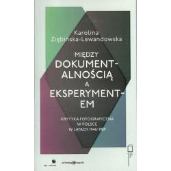 MIĘDZY DOKUMENTALNOŚCIĄ A EKSPERYMENTEM Karolina Ziębińska-Lewandowska