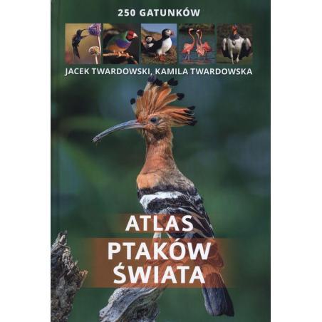 ATLAS PTAKÓW ŚWIATA 250 GATUNKÓW Kamila Twardowska