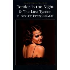 TENDER IS THE NIGHT AND THE LAST TYCOON  F. Scott Fitzgerald
