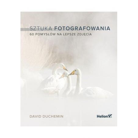 SZTUKA FOTOGRAFOWANIA 60 POMYSŁÓW NA LEPSZE ZDJĘCIA David Duchemin