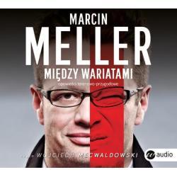 CD MP3 MIĘDZY WARIATAMI Marcin Meller