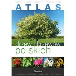 ATLAS DRZEW I KRZEWÓW POLSKICH Marek Kosiński, Renata Krzyściak-Kosińska