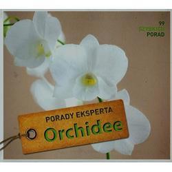 ORCHIDEE PORADY EKSPERTA 99 SZYBKICH PORAD Kullmann Folko