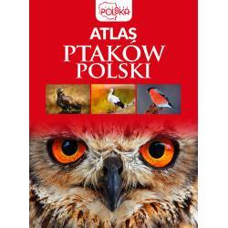 ATLAS PTAKÓW POLSKI Przybyłowicz Anna