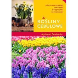 ROŚLINY CEBULOWE Gawłowska Agnieszka
