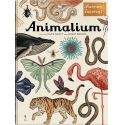 ANIMALIUM MUZEUM ZWIERZĄT (7+) Broom Jenny