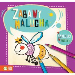 ZABAWY MALUCHA 2+